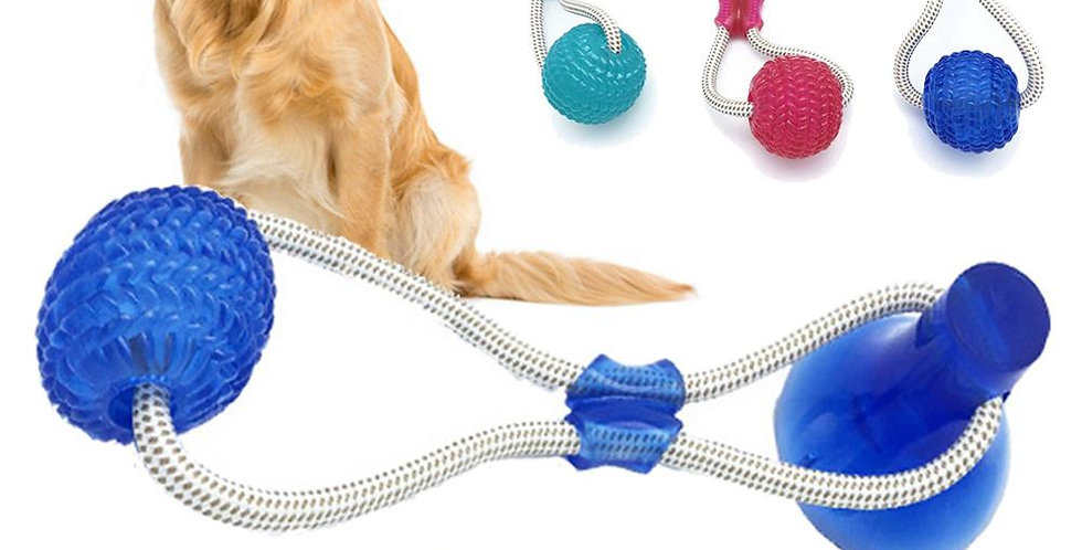 Dog Cats Dogs Interactive Suction Cup Push TPR Ball Toys