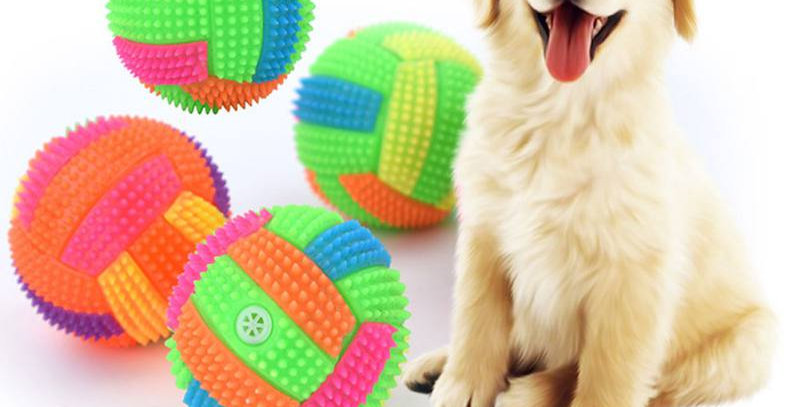 Pet Toy Ball Dog Chew Durable