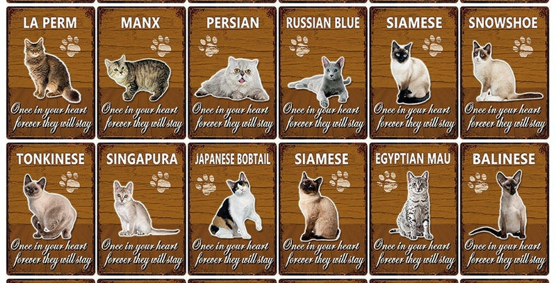 Pets Cat Metal Sign Home Decor Bar Wall Art Painting