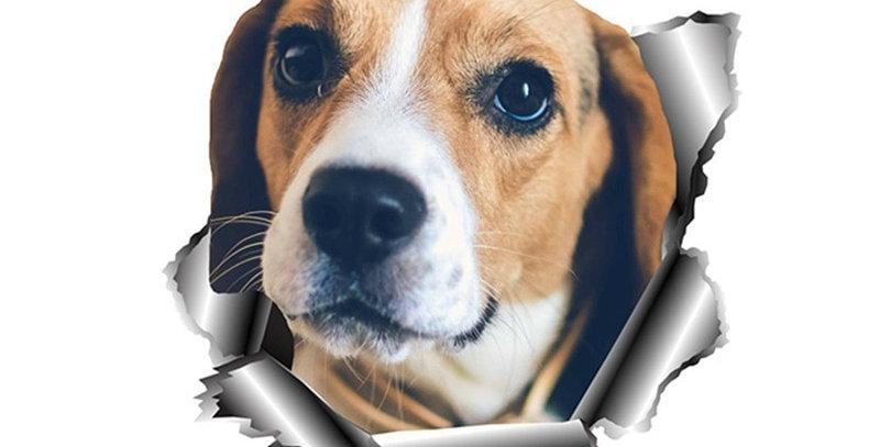 Dawasaru Beagle Torn Metal Pet Dog Car Sticker