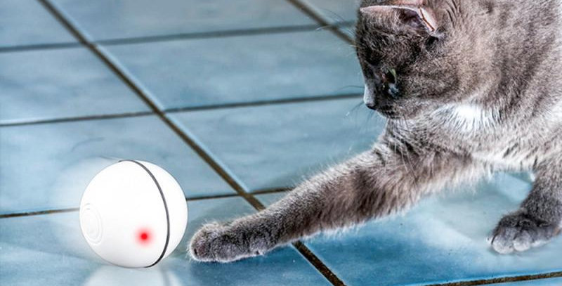 360 Degree Interactive Pet LED Glowing Motion Ball Toy