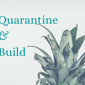 Quarantine & Build