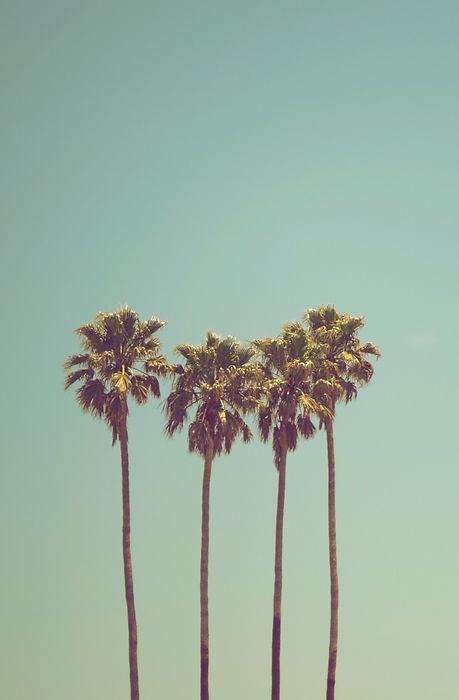 summertime_edited.jpg