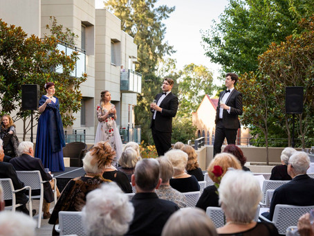 Opera in the Courtyard
