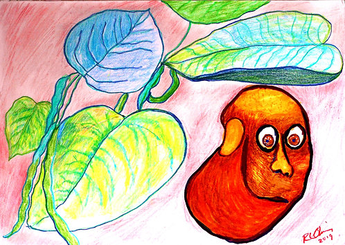The Human Bean colored pencil drawing on paper RLO