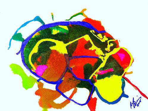Cerebral Fields I