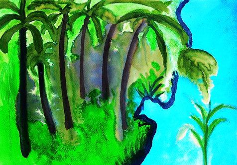 Imaginary Tropics