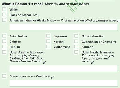 he ACS race question identifies Koreans.