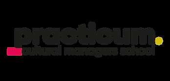 practicum_logo_color-01.png