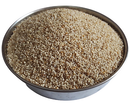 LITTLE MILLET Rice, Unpolished  कुटकी Kutki/ Same/ Samalu/ Gajro/ Sava/ Kuri
