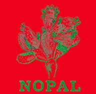 Nopal rouge & vert.jpg
