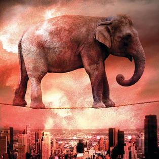 Elephant Movie Poster
