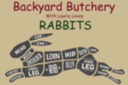 rabbits_cover.jpg