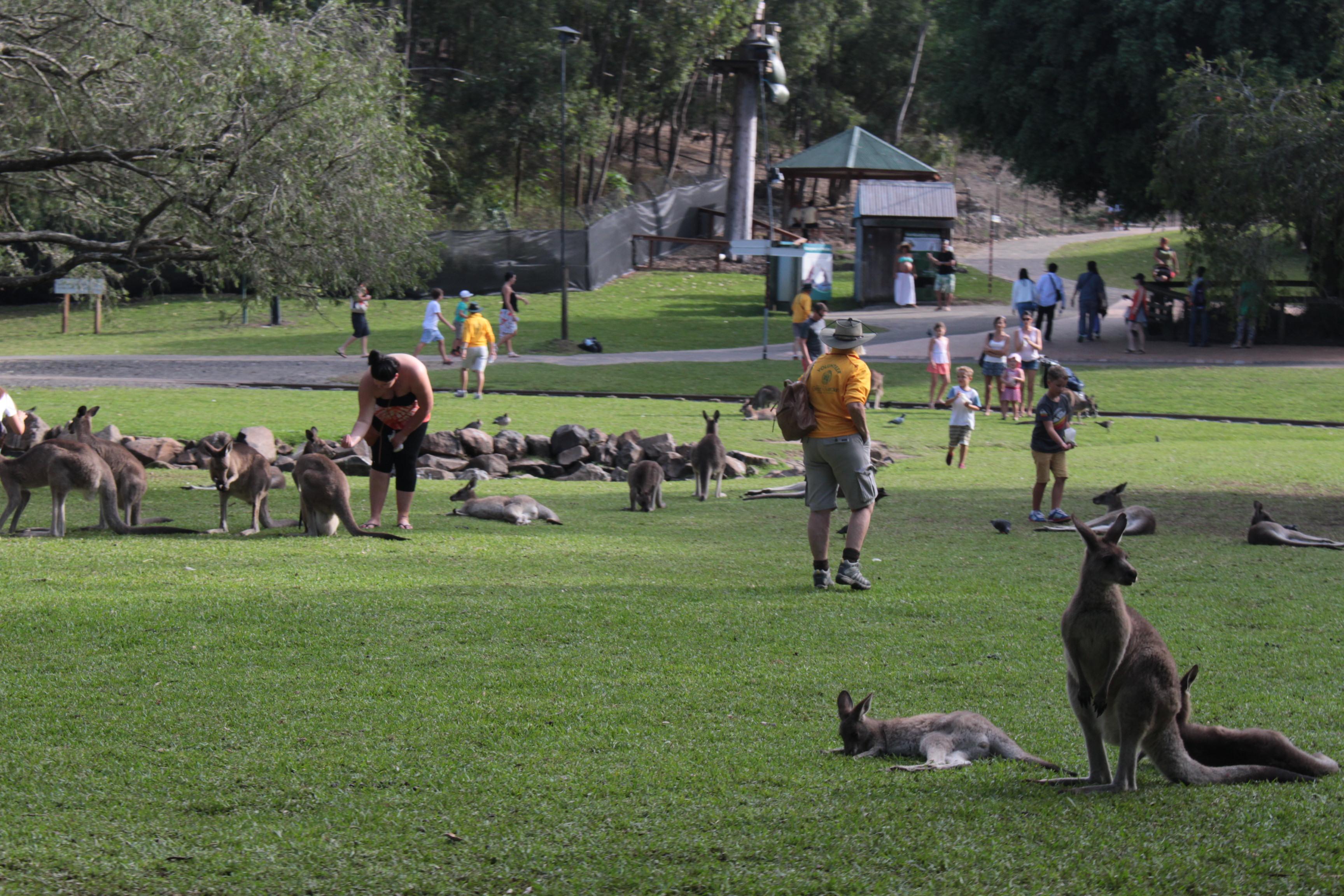 커럼빈 와일드라이프 동물보호공원