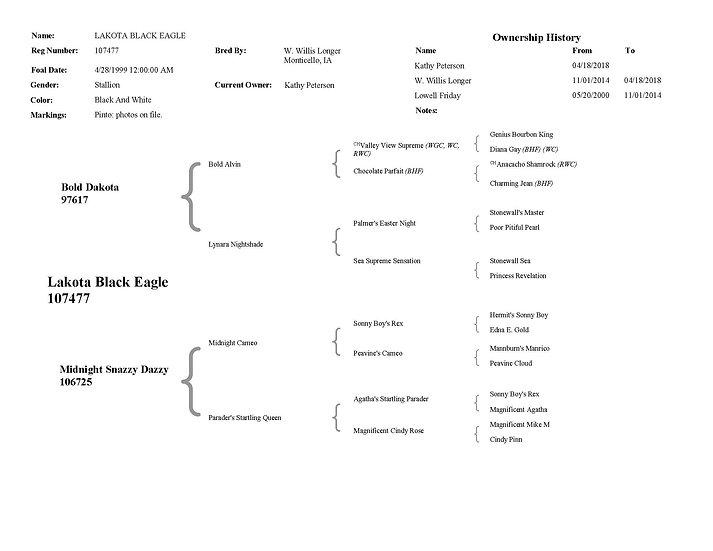 Lakota Black Eagle
