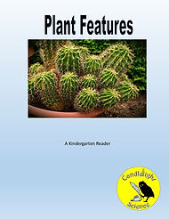 Plant Features.jpg