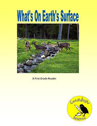 What's On Earth's Surface.jpg