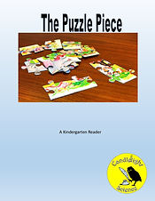 The Puzzle Piece.jpg