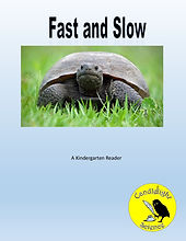 Fast and Slow.jpg