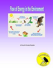 Energy Flow in the Environment.jpg