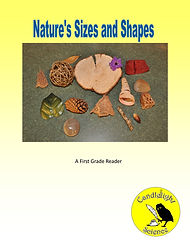Nature's Sizes and Shapes.jpg