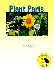 Plant Parts.jpg