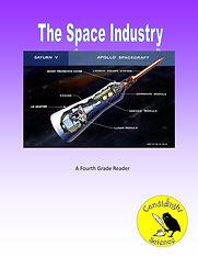 The Space Industry.jpg
