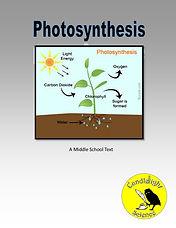 Photosynthesis (MS).jpg