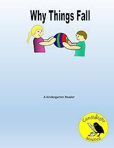 Why Things Fall.jpg