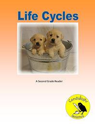 Life Cycles B.jpg