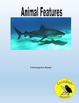 Animal Features.jpg