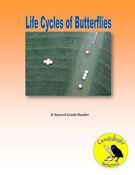 Life Cycles of Butterflies.jpg