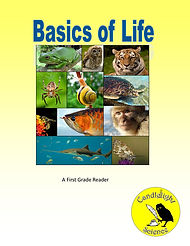 Basics of Life.jpg