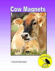 Cow Magnets.jpg