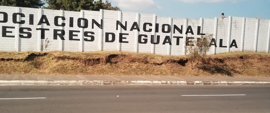 nt guatemala.jpg