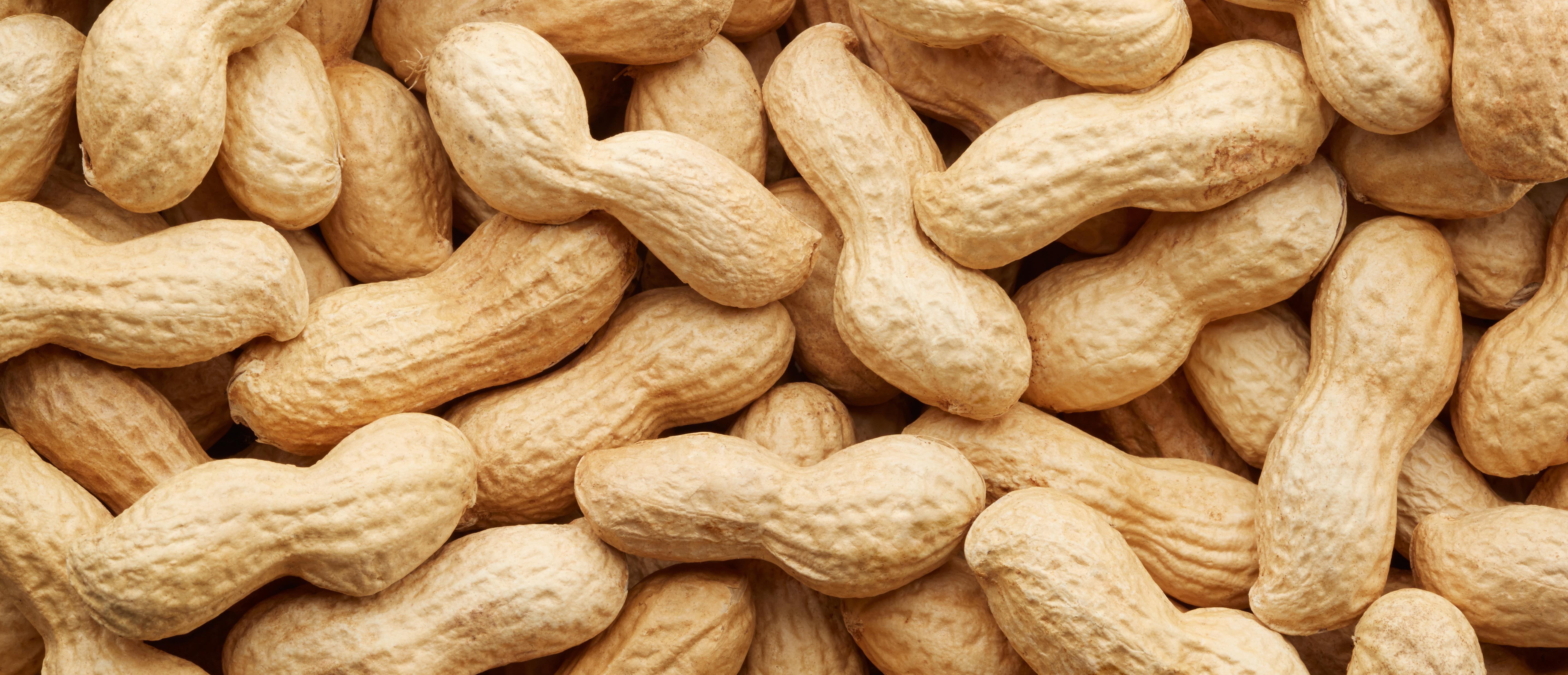peanuts 300x129.jpg