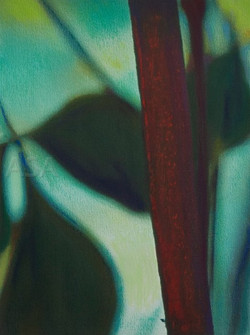 Unbroken Reeds VI