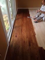staining hardwood floors, michigan
