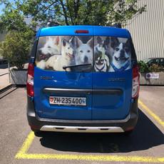 Fahrzeuge (2).jpg