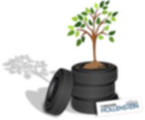 Baum pflanzen Reifenwechsel.jpg