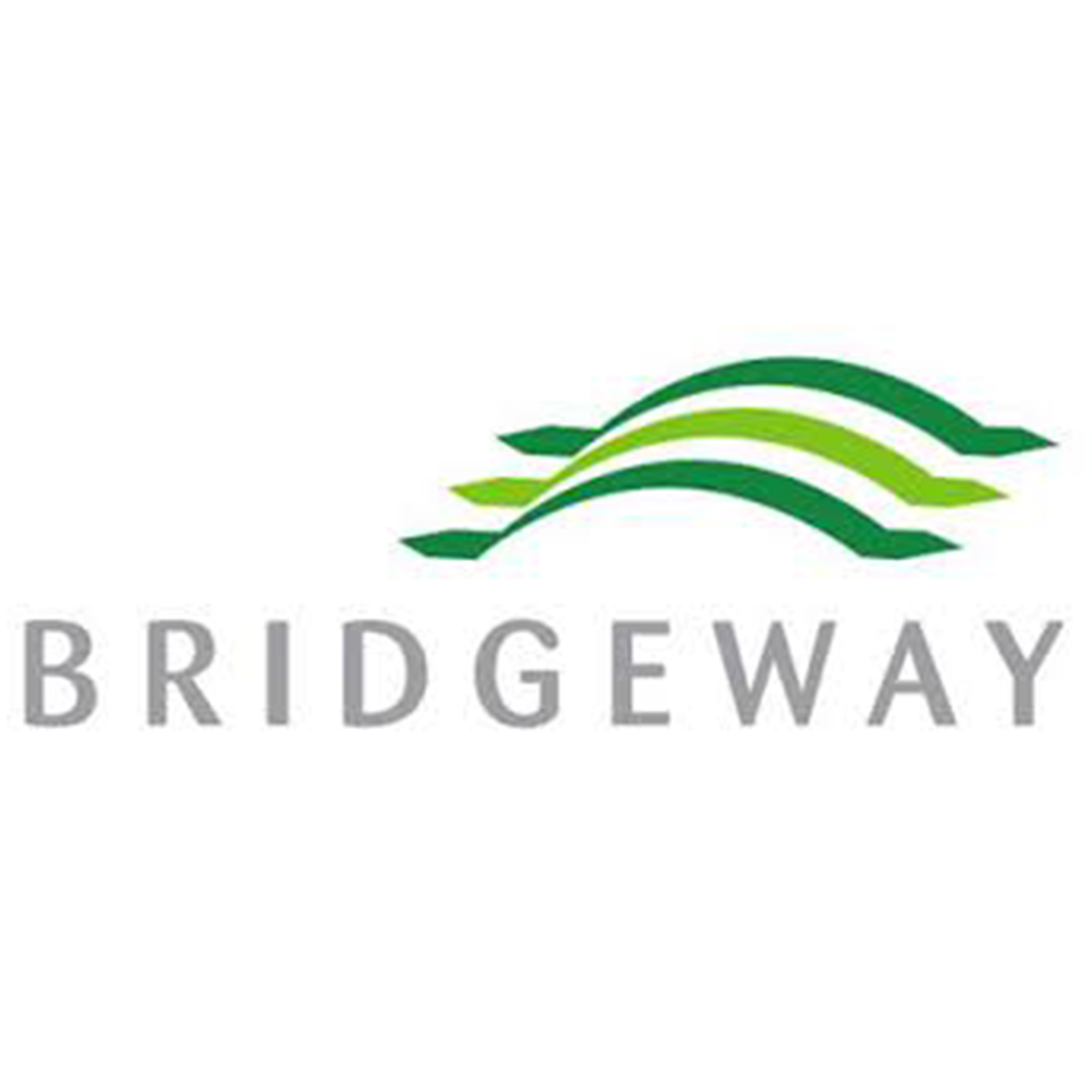 Bridgeway Capital Management