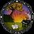 logo-main-circle-nowords-icon.png