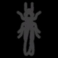 Termite_edited.png
