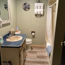North House Basement Bathroom.jpg