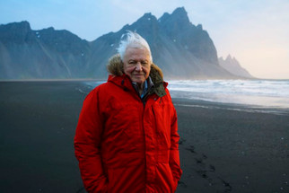 Sir David Attenborough joins Instagram for a fantastic cause