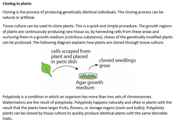 Cloning in plants.JPG