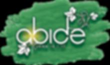 abide_art.png