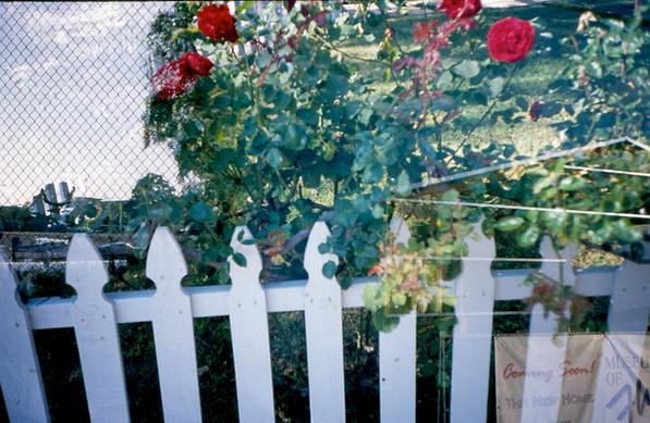 fence-and-fence_6897306977_o.jpg