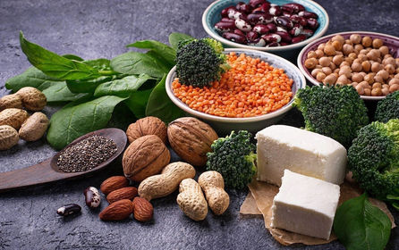 8-Plant-Based-Protein-To-Support-Weight-