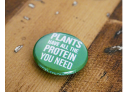 Plants Have All the Protein You Need Button